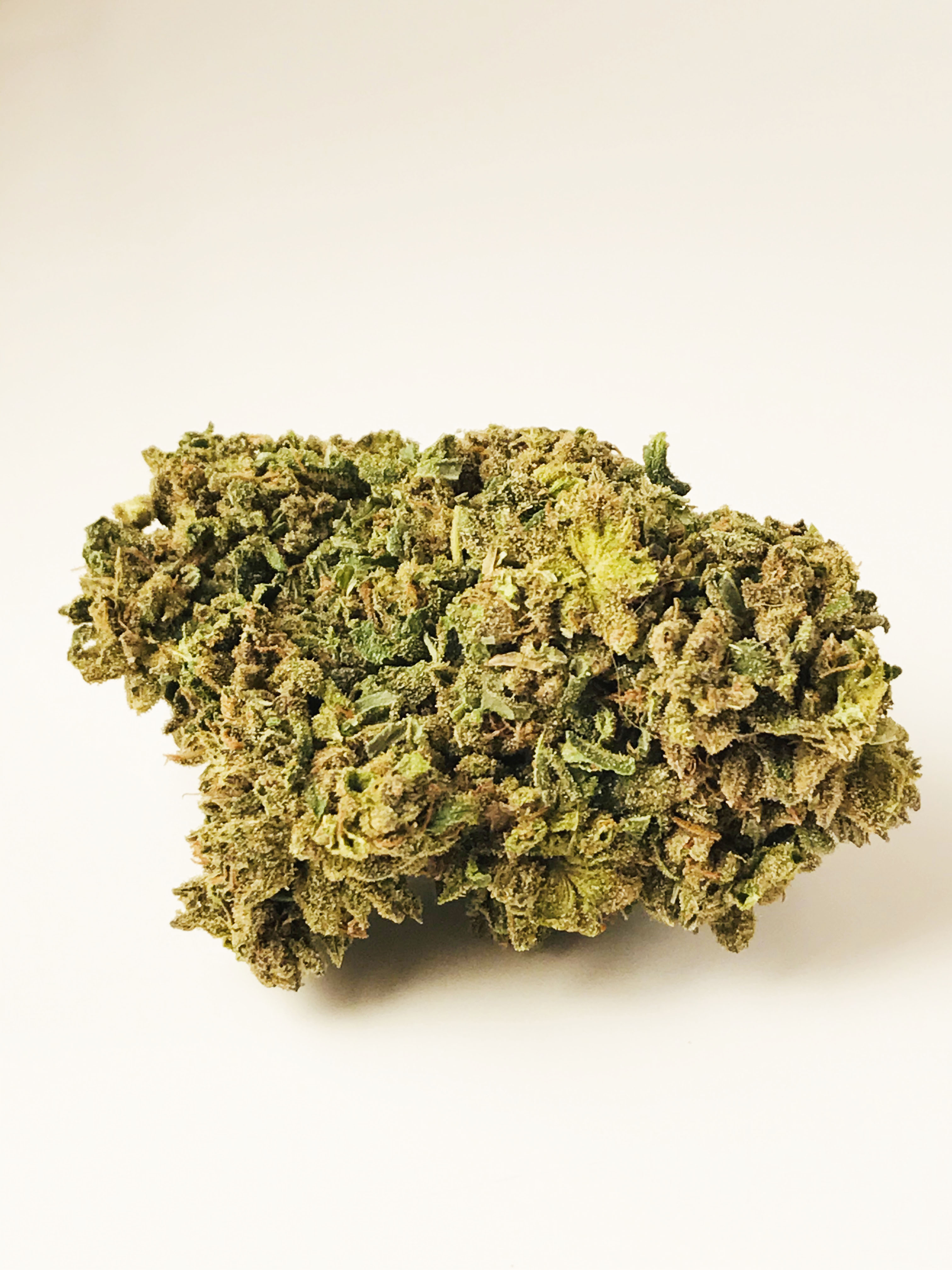 TROPHY WIFE - HAND TRIMMED FLOWER